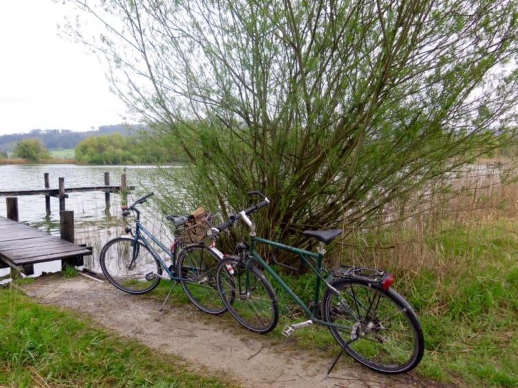 las bicis en el lago